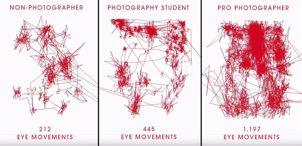движения глаз разных людей при просмотре фотографии