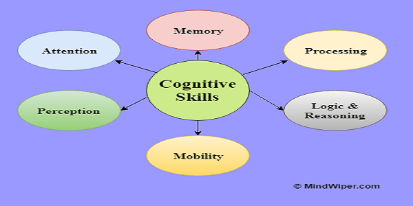 Cognitive Skills – The List of Cognitive Capabilities