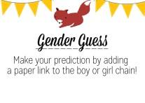 Gender Guess