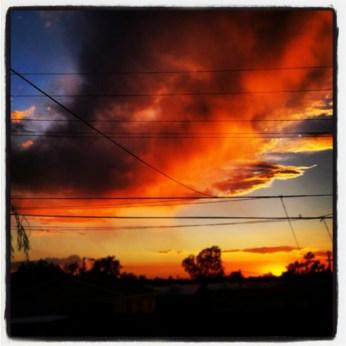 Sunset over the backyard.