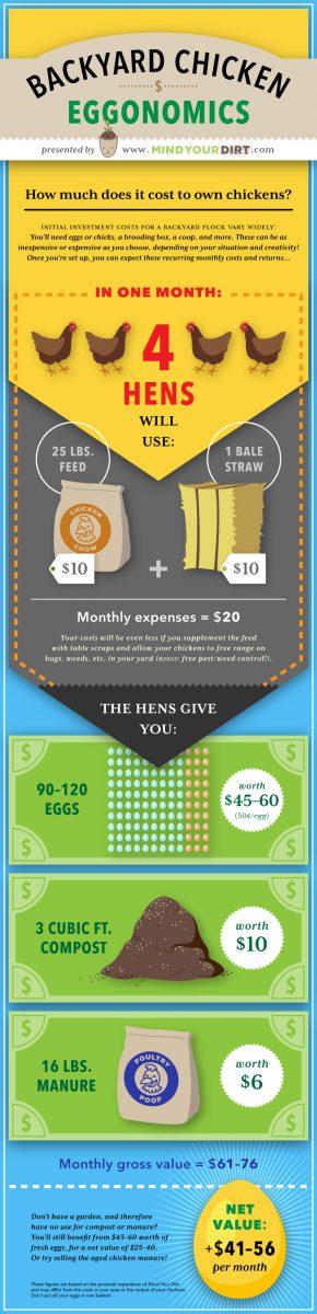 Mind Your Dirt Backyard Chicken Costs Pinterest Infographic