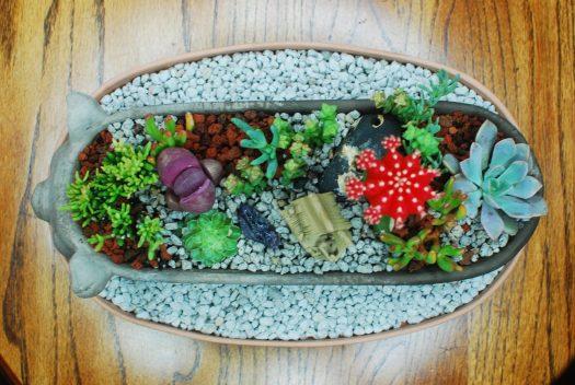 Little Pig Succulent Garden 04_Birdseye view