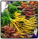 A rainbow of carrots at Portland Farmers Market.