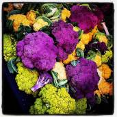 Portland Farmers Market. Some colorful cauliflower