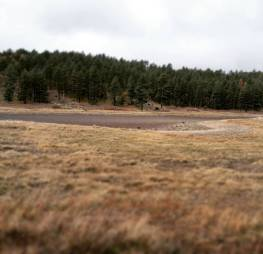 One of many dried up lake beds.