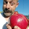 Thanksgiving 2015_07_Harvesting Giant Pomegranates