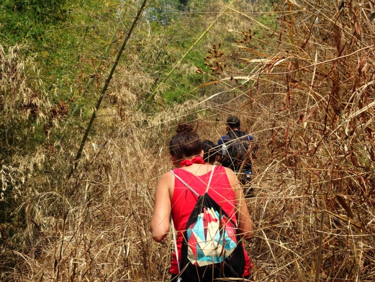 Trekking bei Chiang Mai