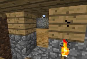 村の家を解体