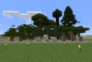植林場完成
