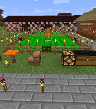 畑を作り始めました