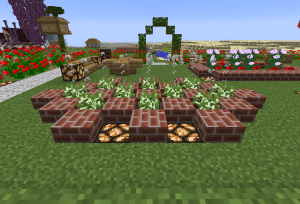 苗の花壇…