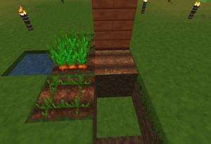 土を置いて耕す