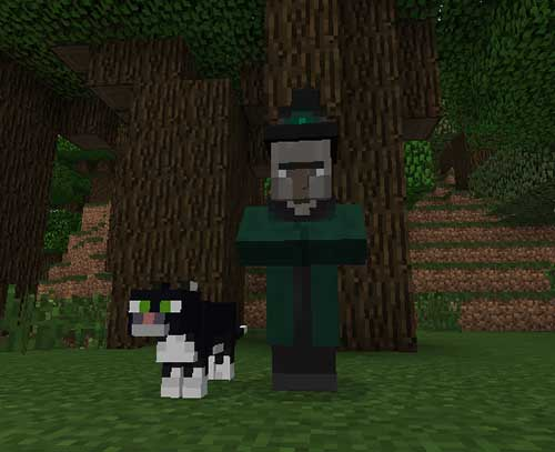 Ender Zoo Mod for Minecraft