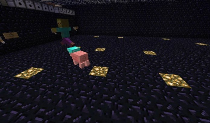 pig-companion-5