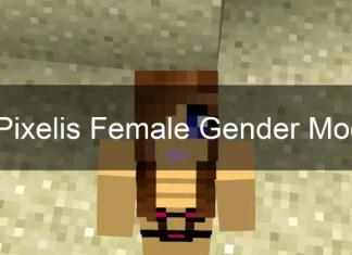 iPixeli's Gender mod