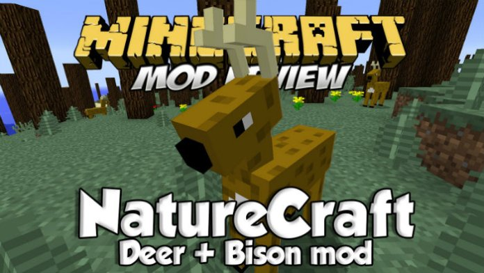 naturecraft-1