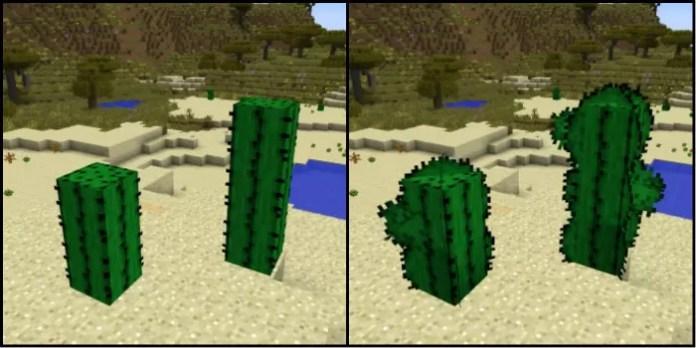 better-cactus