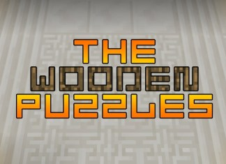 the wooden puzzles