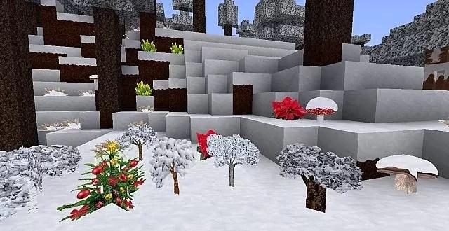 zedercraft-Christmas-7