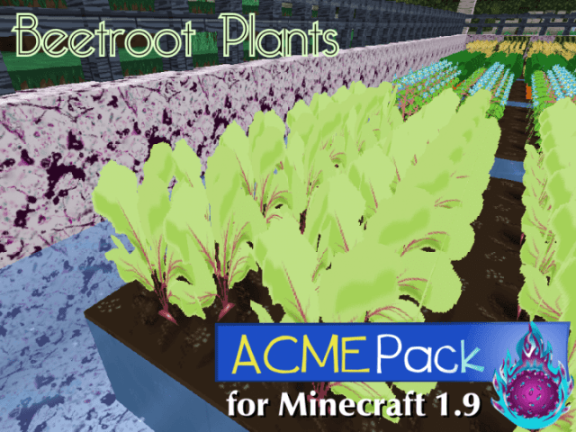 acme-resource-pack
