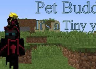 pet buddy mod