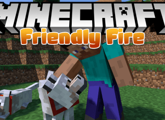 friendly fire mod mc