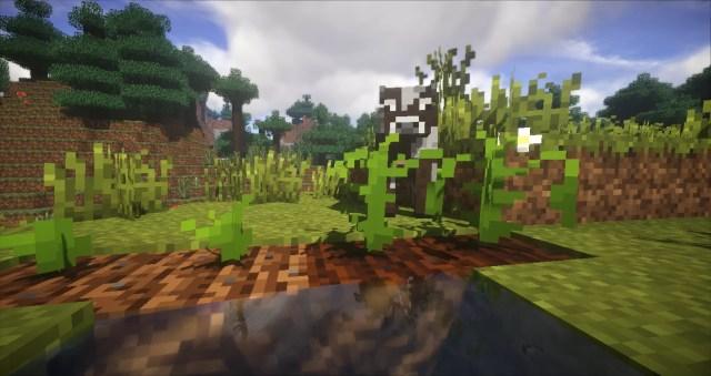 plants-mod-6-700x371