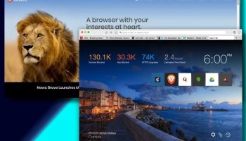 brave browser for privacy