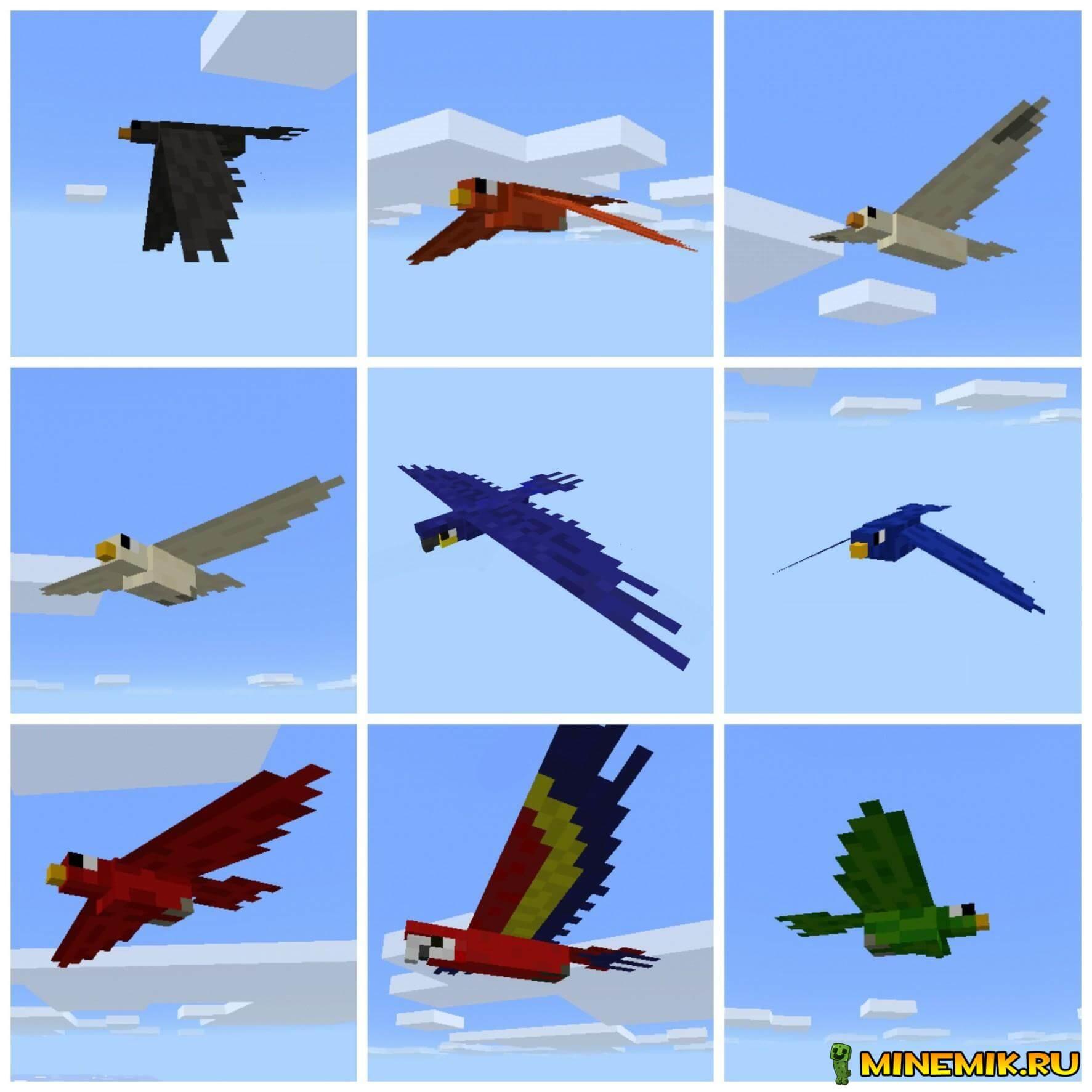 Птицы в Pocket Creatures