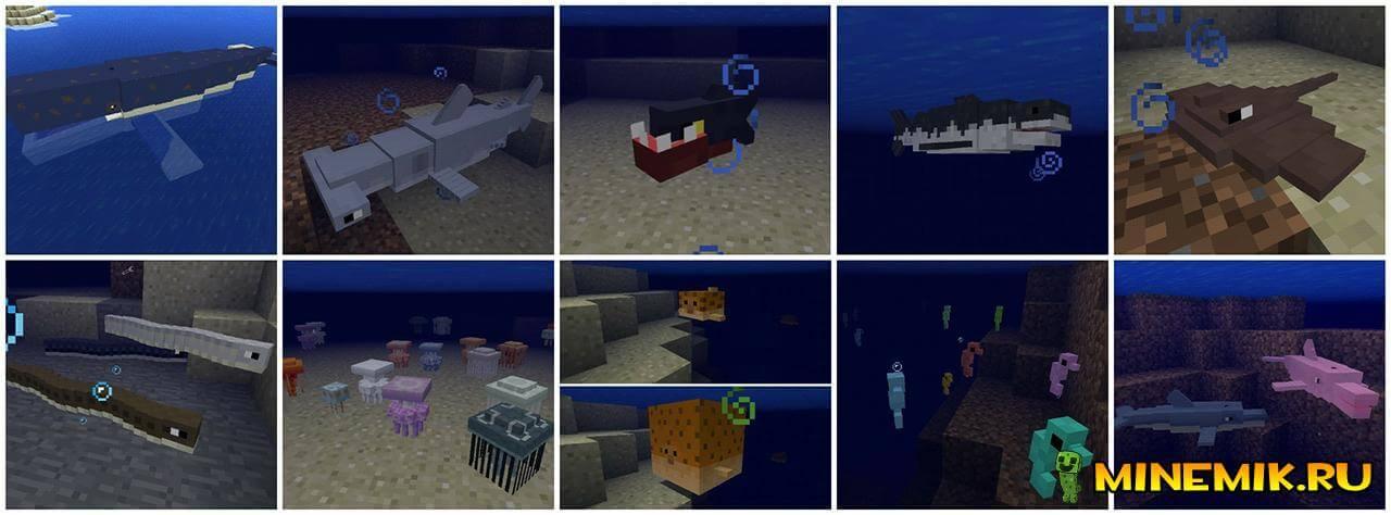 Морские животные в Pocket Creatures для Minecraft PE