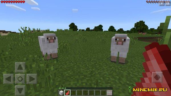 Выпадание мяса из овцы при ее смерти