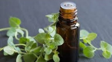 HOW TO USE OIL OF OREGANO