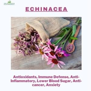 Herbs to Boost Your Immune System | Ar-Rahmah Pharm