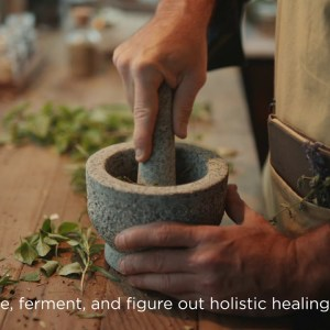 One Daily Multiherbal Holistic - Foraged & Fermented - 6 second