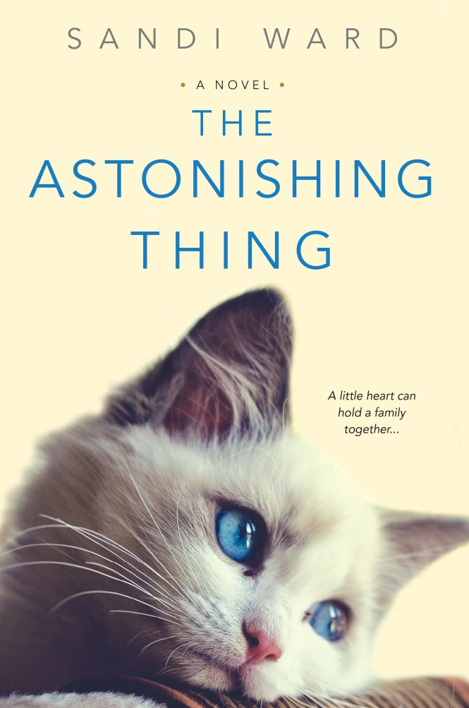the astonishing thing copy_March 2017.jpg