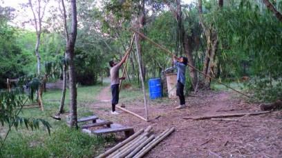 Bamboo_20120410_043