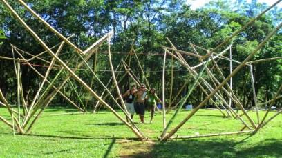 Bamboo_20120410_062