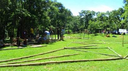 Bamboo_20120410_067