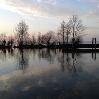 Gastbeitrag von Uli: Herbsttag am Steinhuder Meer