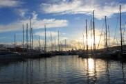 Palma Hafen 4