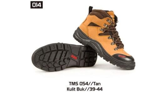 014-TMS-054