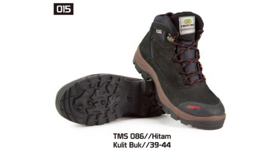 015-TMS-086