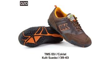 020-TMS-101