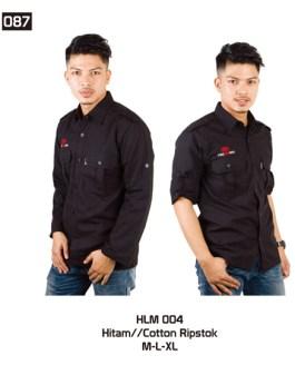 087-HLM-004