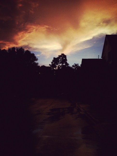 Silhouette of a Swift Storm
