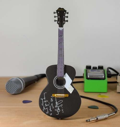 Neil Diamond - Epiphone Signature Acoustic