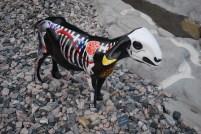 Goat a' palooza!!!