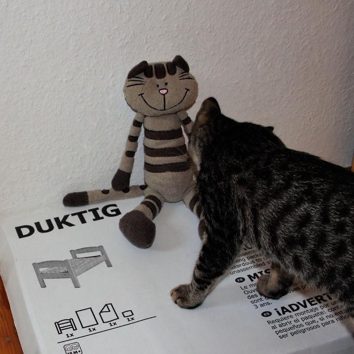 Ikea-Hack - ein Katzenbett