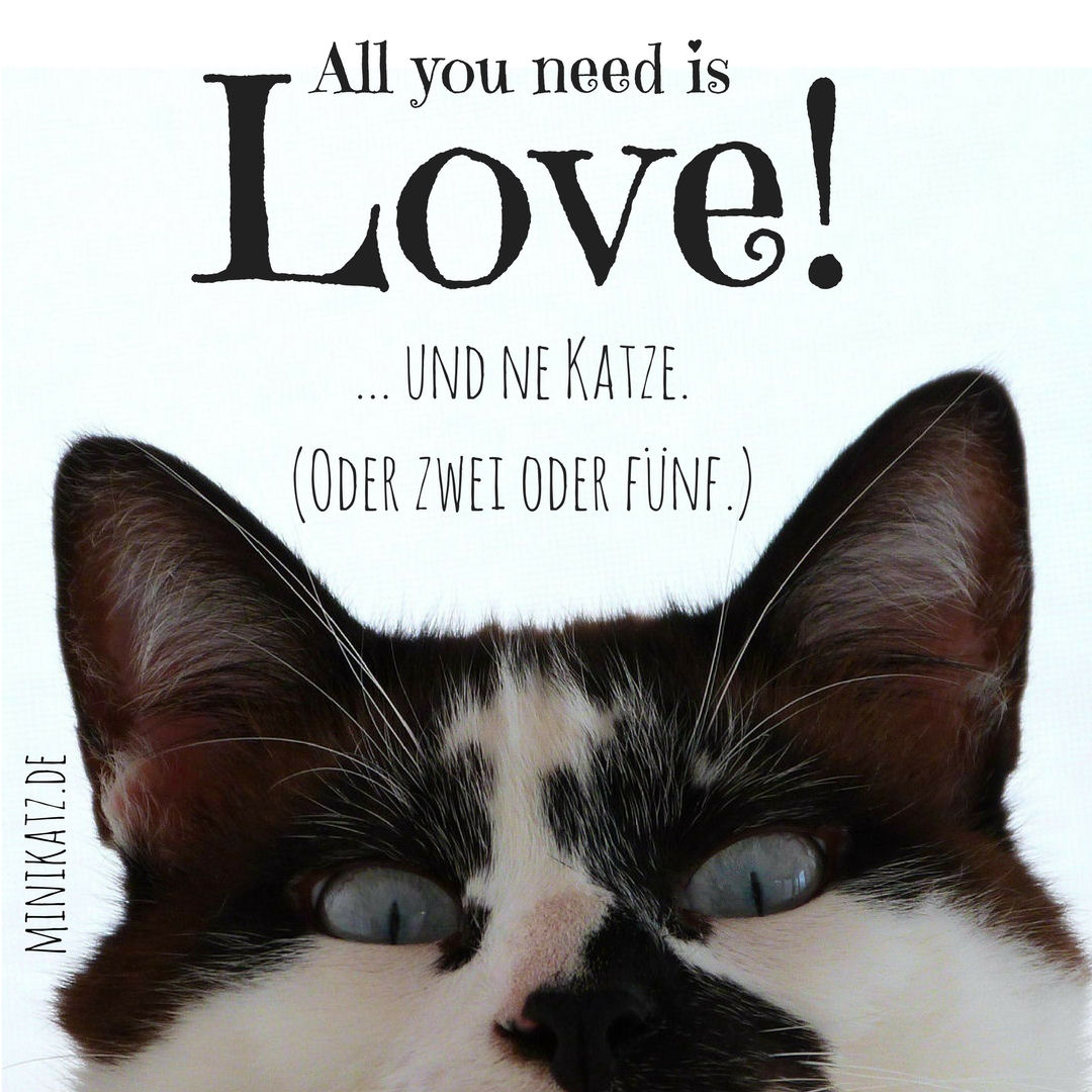 minikatz - all you need is love