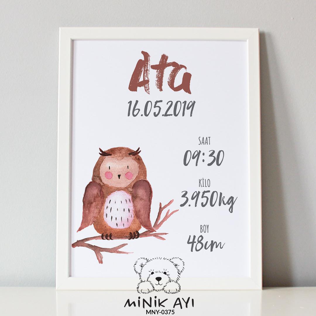 baykuş doğum panosu